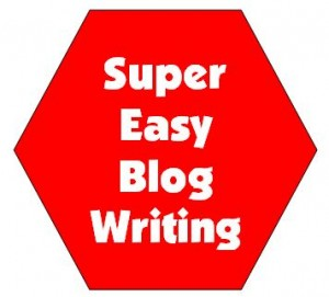 blog writitng, blog writer, marketing copywriter, SEO Content Writer